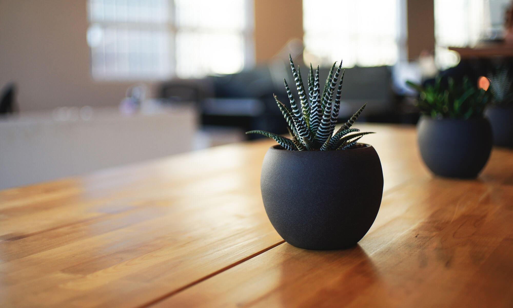 New York Workplace Law | Pitta & Giblin LLP